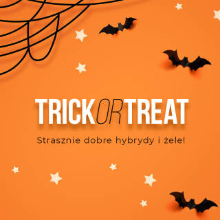 SILCARE INSPIRATIONS. Trick or Treat collection - Halloween collection
