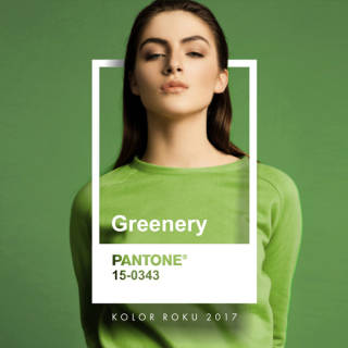 SILCARE INSPIRTIONS Greenery Pantone - Color of the Year 2017