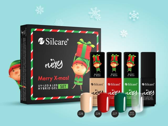 Are you looking for an idea for a Santa Claus gift? This is Flexy Merry X-mas!
